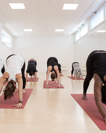 yoga-sivananda